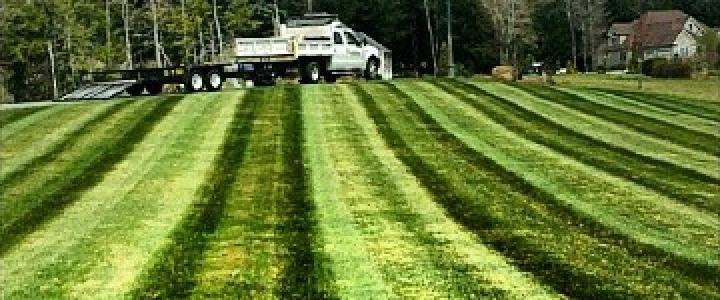 Lawn Mowing – June 08, 2015