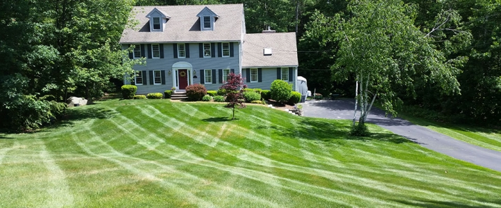 New Lawn – June 05, 2015